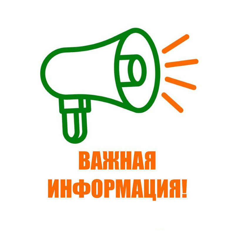 Начался прием документов на стипендии Губернатора Мурманской области