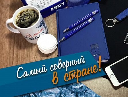 Самый северный университет России находится в Мурманске